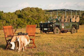 temba game reserve grahamstown accommodation