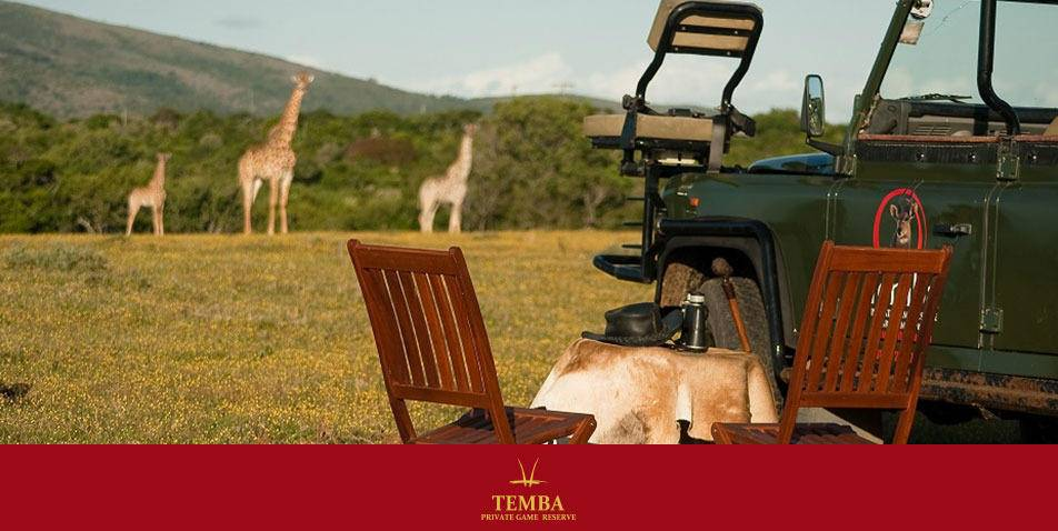 temba-private-game-reserve-grahamstown2